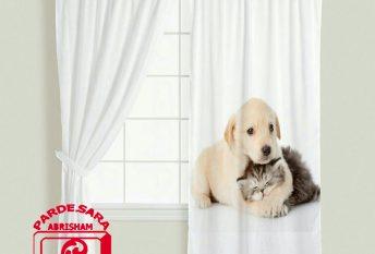 طرح دیجیتال سگ